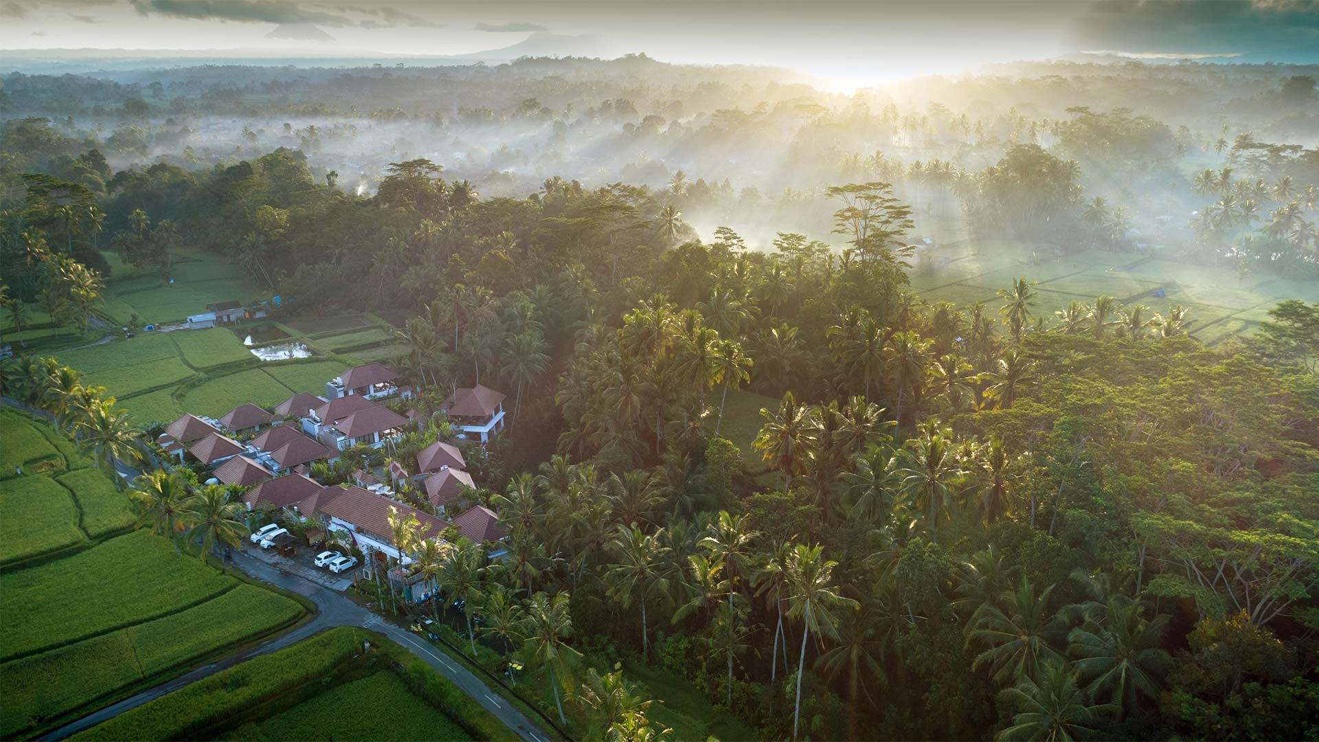 luxury villa at dedary kriyamaha ubud view 1