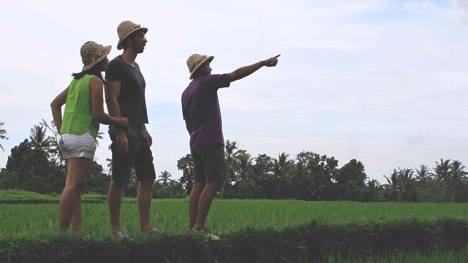 get more activity likes walking at rice field2