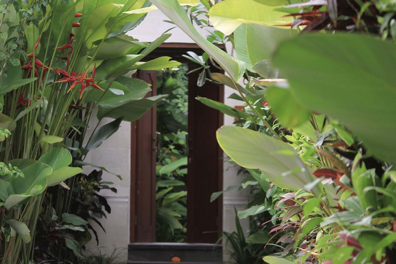 the First door that you meet at one bed garden package by dedarykriyamahaubud